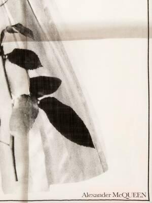 コレクション ドレスショール