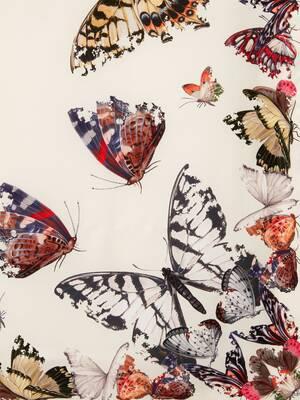 Foulard Butterfly Decay