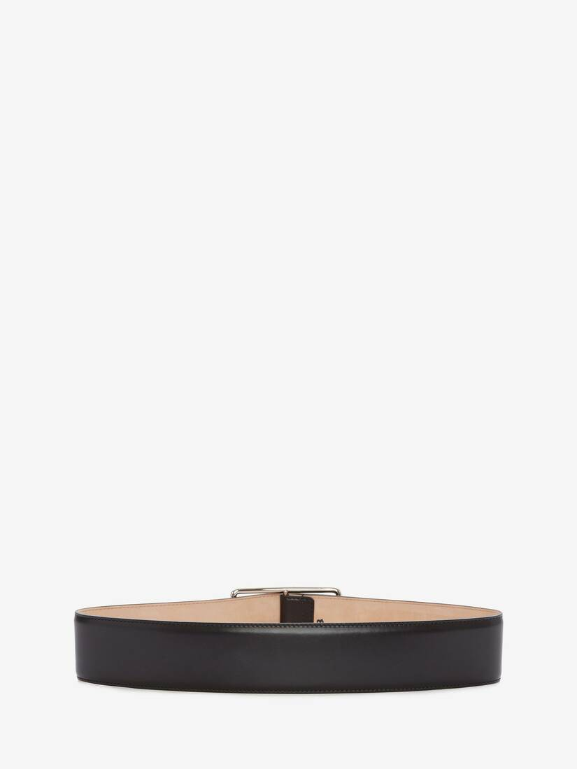 Big Geometric Belt
